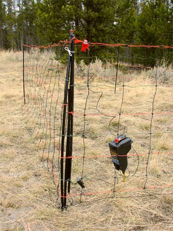 Bear Food Fence Udap Pepper Power